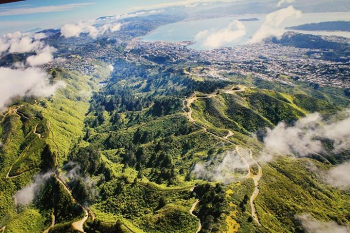 Zealandia (ảnh sưu tập trên mạng)
