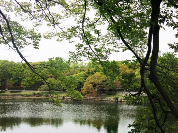 9c Quang canh trong cong vien bao quanh thanh Osaka
