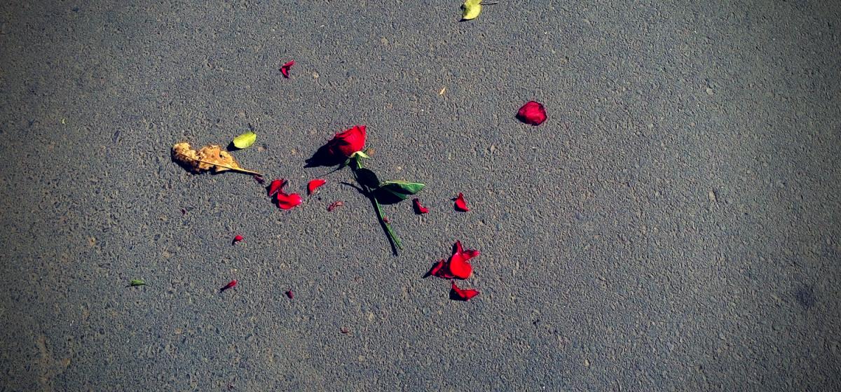 tình yêu cuối
