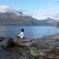 Sống ở New Zealand: Hay và Dở